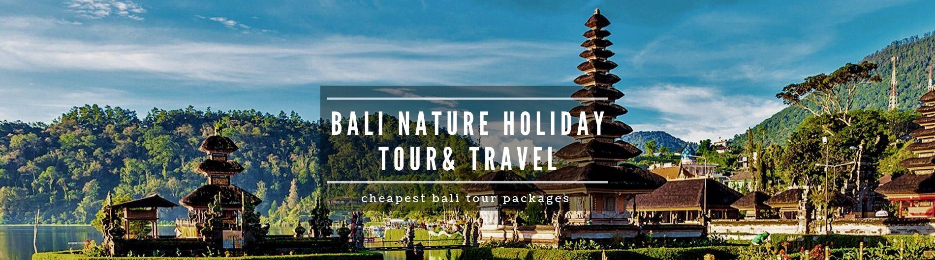 bali cheapest tour